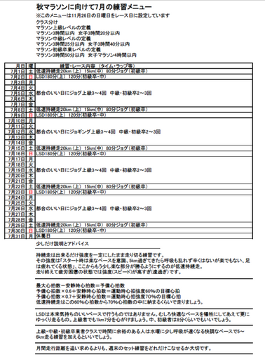 チャレンジマラソン(大阪7月A) - コピー.png