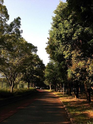 久宝寺公園.JPG